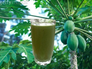 papaya-leaf_juice