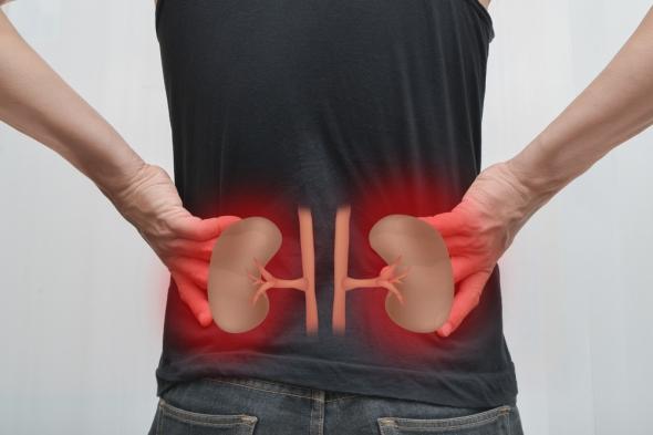 10 Kidney Damaging Habits
